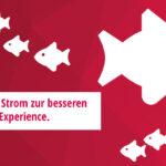 milch & zucker updates the bonprix career website